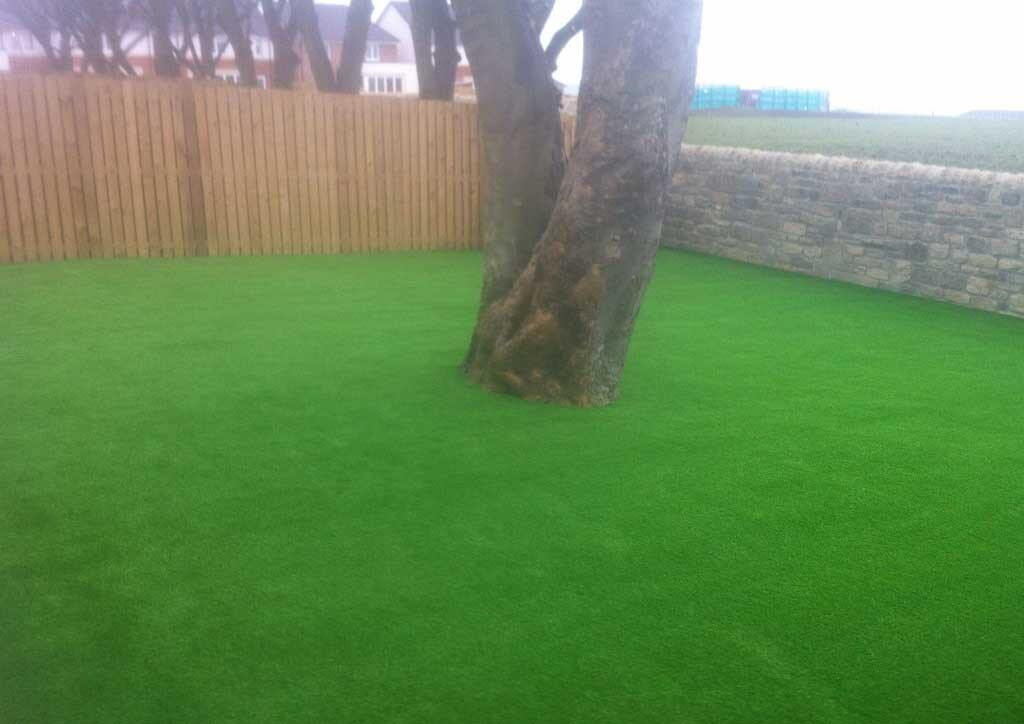 artificial-lawn-whitburn
