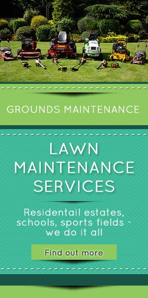 Lawn-Maintenance-Services