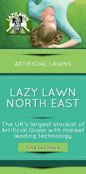 Lazy-Lawn-North-East